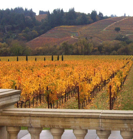 Sonoma winery in autumn
