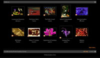 Peter Krohn website preview thumbnail