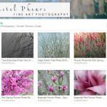 Etsy store of Kristel Phears