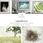 Lupen Grainne Photography at Etsy